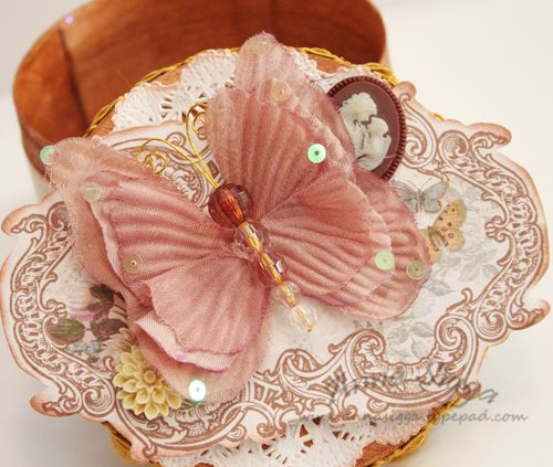 Butterfly box cl3